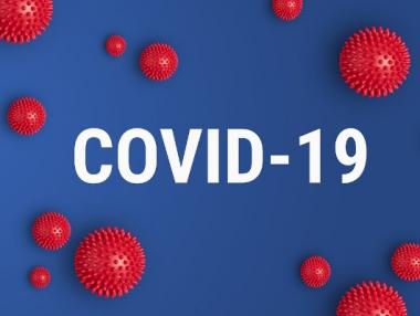 Palmeira tem 497 casos confirmados de Covid-19