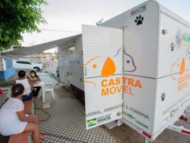 Projeto Pet Amigo atenderá animais da Apapi, em Palmeira