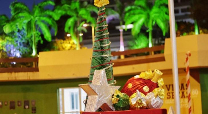 Natal Luz: um presente para você! começará na sexta (6), em Palmeira