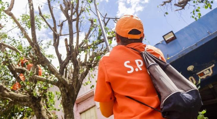 Prefeitura e SPCU realizam mutirão no bairro de Cafurna, em Palmeira